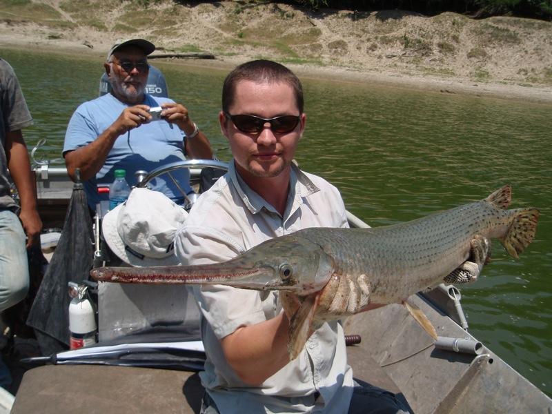 Ca world fishing usa alligator gar texas for Gar fish texas